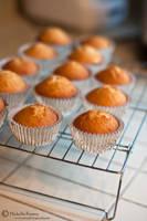 Cupcakes in Progress by MichelleRamey