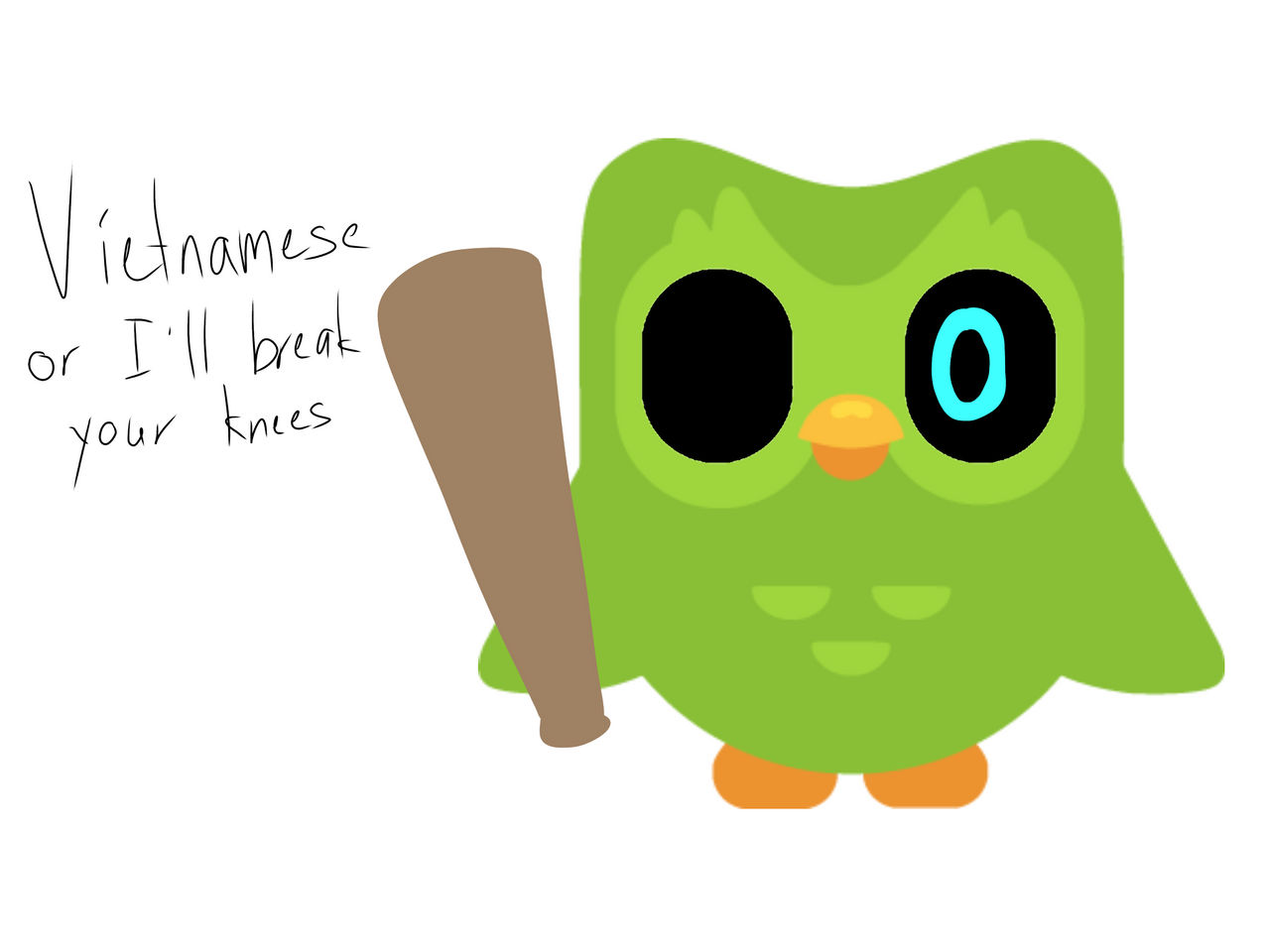 Duolingo by PlumdaFruit on DeviantArt