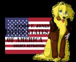 REVAMPHetalia Dogs: America