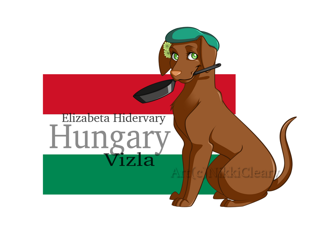 REVAMPHetalia Dogs: Hungary by snickerdoots