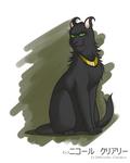 Loki!Cat