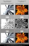 Reflective Chrome