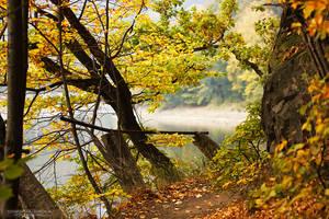 Autumn 9 by DominikaAniola