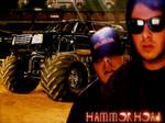 TMHO - HAMMERHEAD