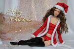 Merry Christmas by RegisteredTrademark