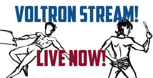 Voltron Livestream of Picarto! (OFFLINE)