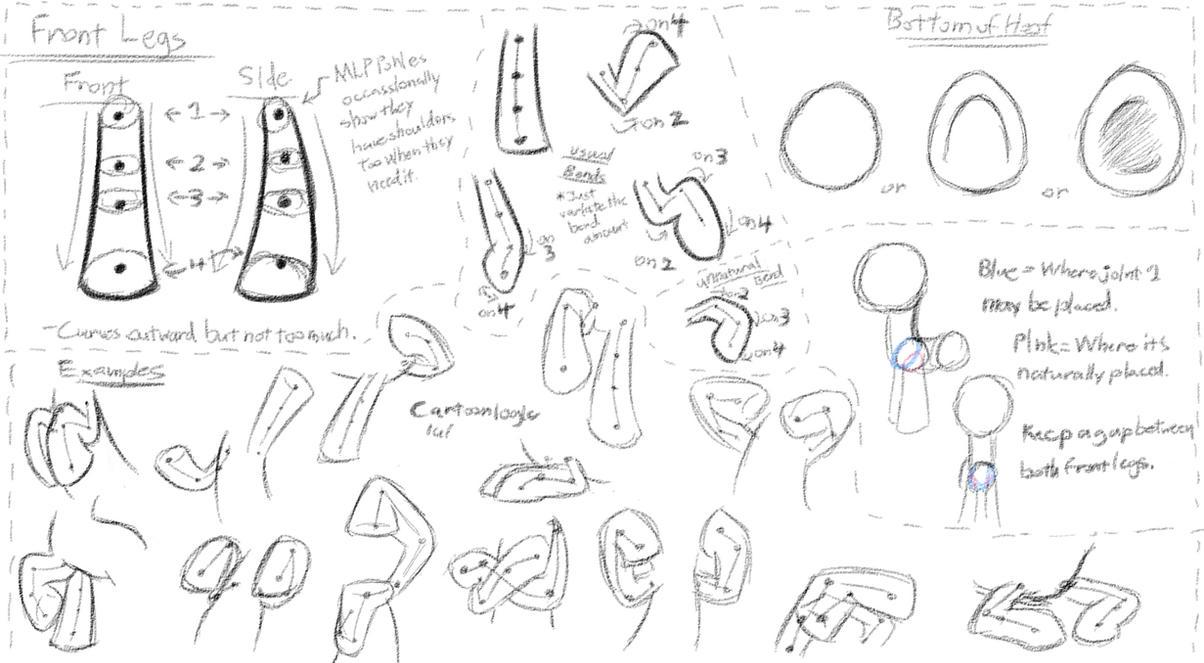 MLP - Basic Anatomy Study 2 - Front Legs by DShou on DeviantArt