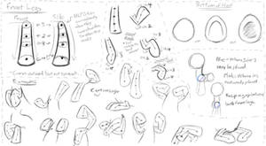 MLP - Basic Anatomy Study 2 - Front Legs by Nyaseiru