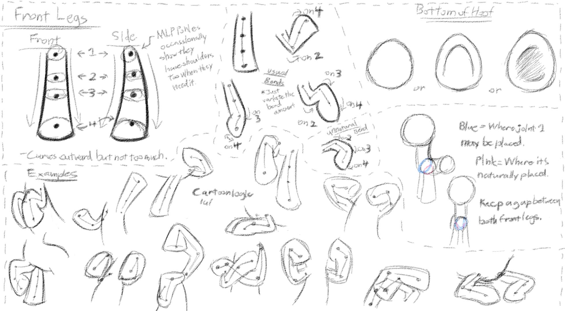 MLP - Basic Anatomy Study 2 - Front Legs by DShou