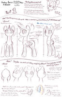MLP - Basic Anatomy Guide Part 1 [Overall + Head] by Nyaseiru