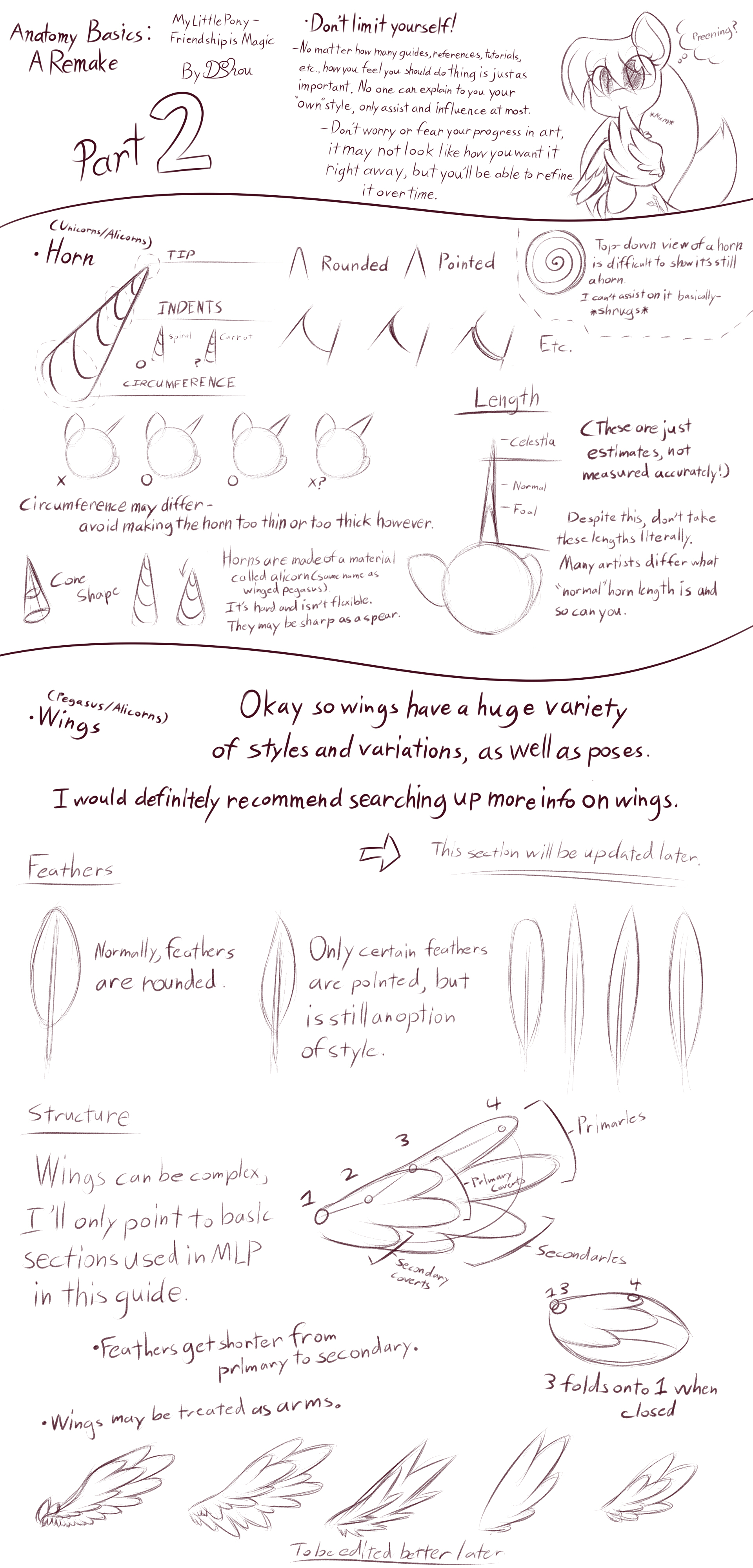 MLP - Basic Anatomy Guide 2 [Horn + Wing(Incomp)] by DShou