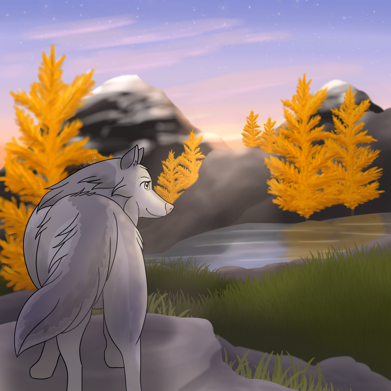 {DotW} Looking Out by xCinderfrostx