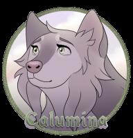 {DotW} Calumina Medallion by xCinderfrostx