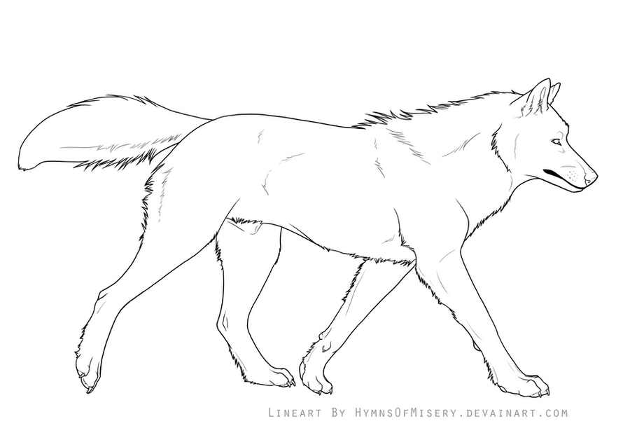 how to draw a wolf side view