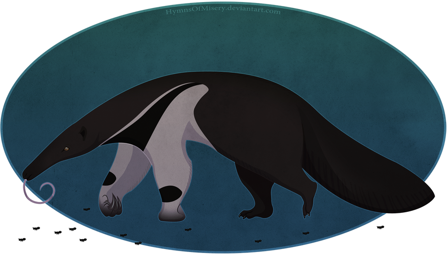 Giant Anteater by Hymnsie