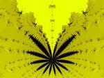 1200 Mics Series - Marijuana