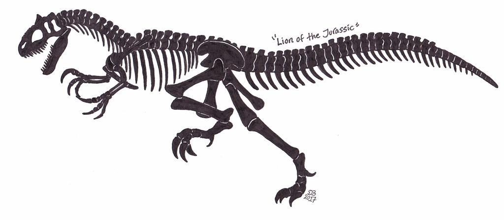 Allosaurus skeleton by XenoTeeth3