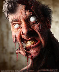 Zombie by AtomiccircuS