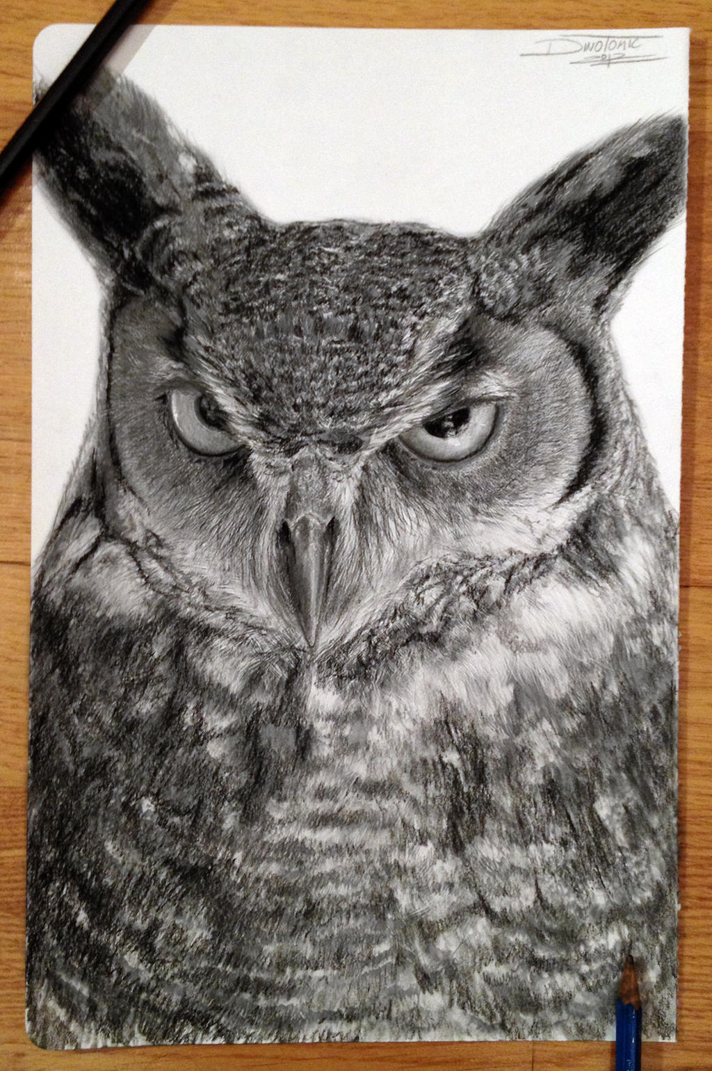 owl drawing by atomiccircus on deviantart