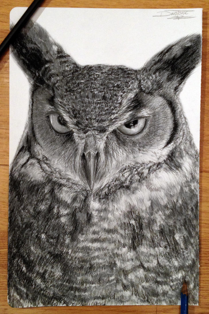 Owl drawing by AtomiccircuS
