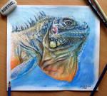 Lizard Color pencil Drawing
