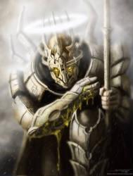 Dragonborn Paladin by AtomiccircuS