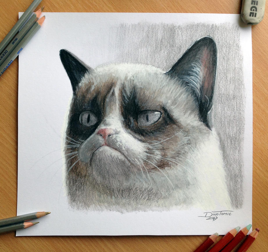 Pencil Drawing of the Grumpy Cat by AtomiccircuS