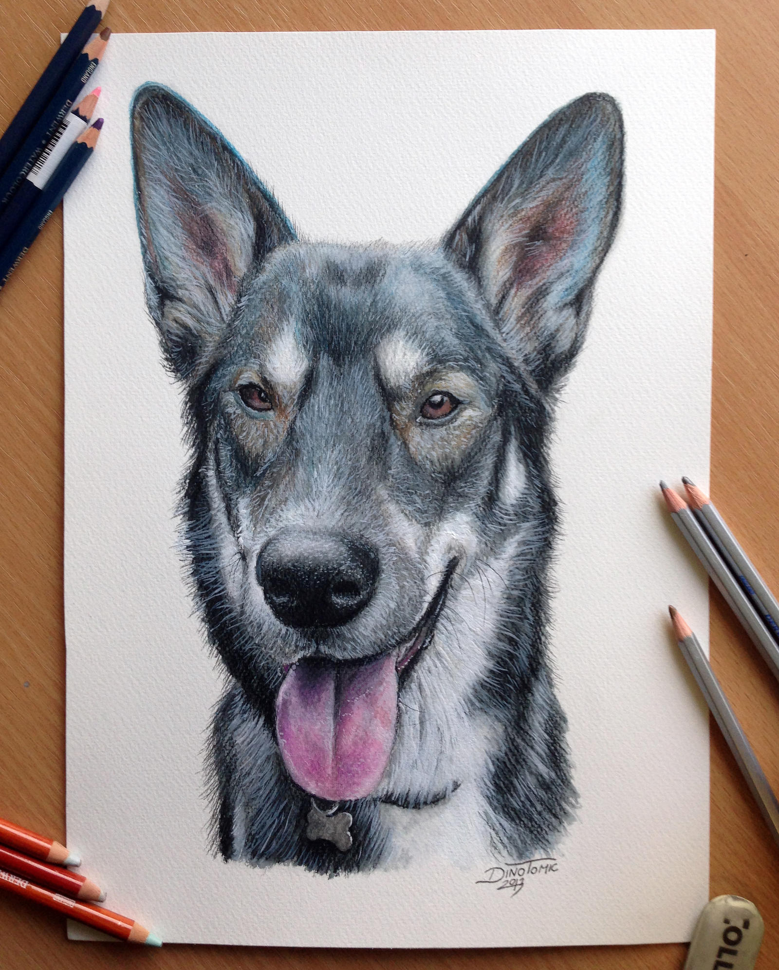 Pencil drawing of a Dog by AtomiccircuS on DeviantArt
