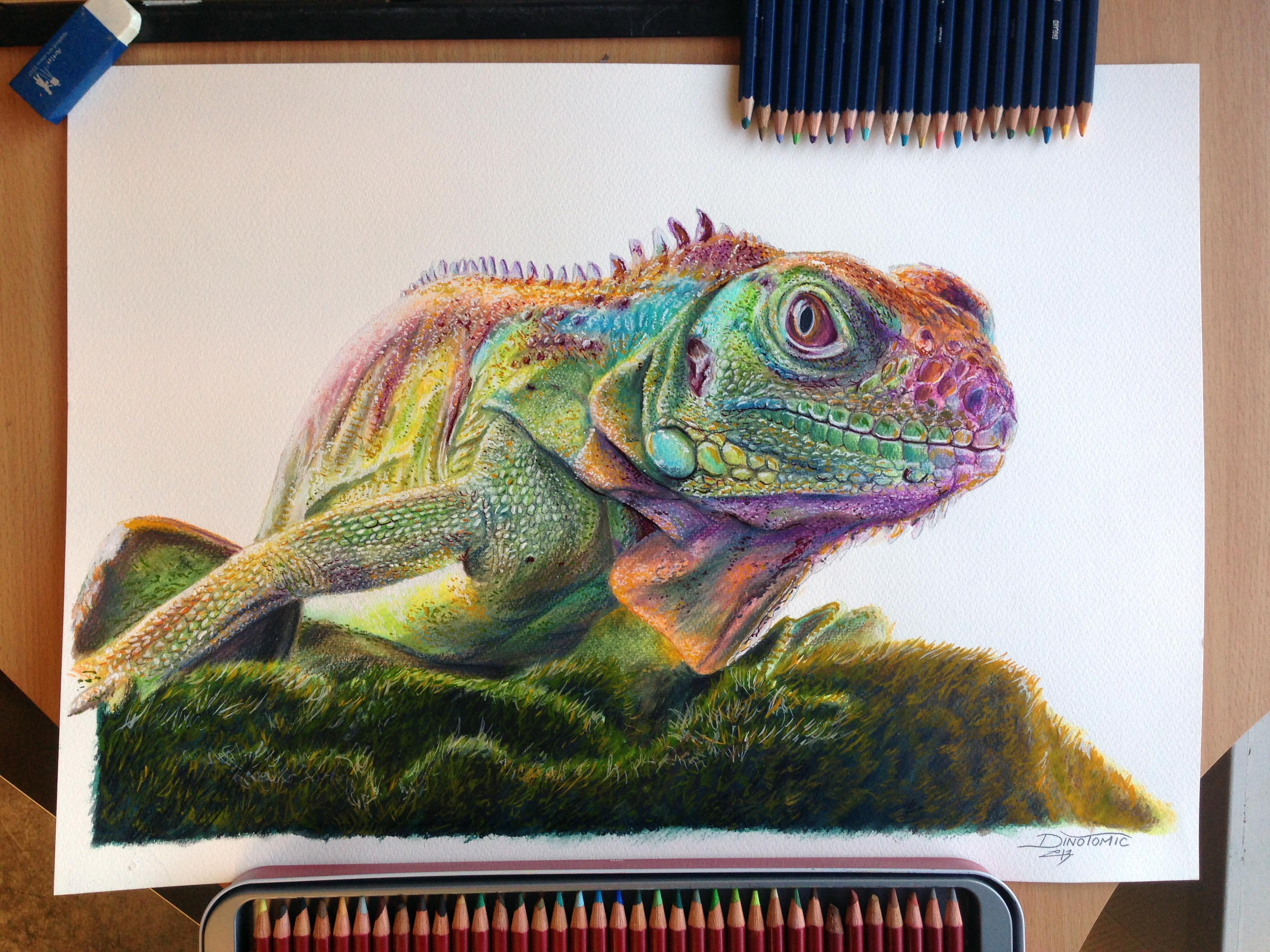 Iguana Mixed media drawing