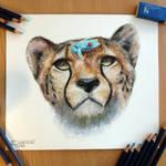 Cheetah and a frog pencil drawing