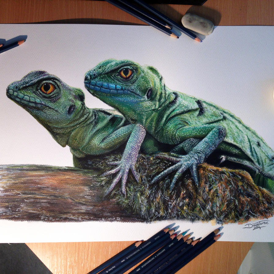 chinese water dragons color pencil drawing by atomiccircus on