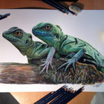 Chinese water Dragons Color Pencil Drawing