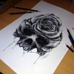 Skulls refined sketch