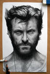 Hugh Jackman Pencil drawing as Wolverine