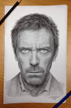 Hugh Laurie Pencil Drawing aka Dr.House