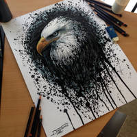 Eagle Splatter Drawing by AtomiccircuS