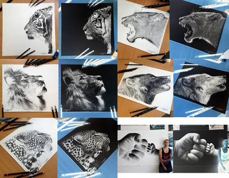 My Inverted drawings