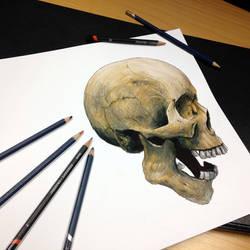 Skull Teaser