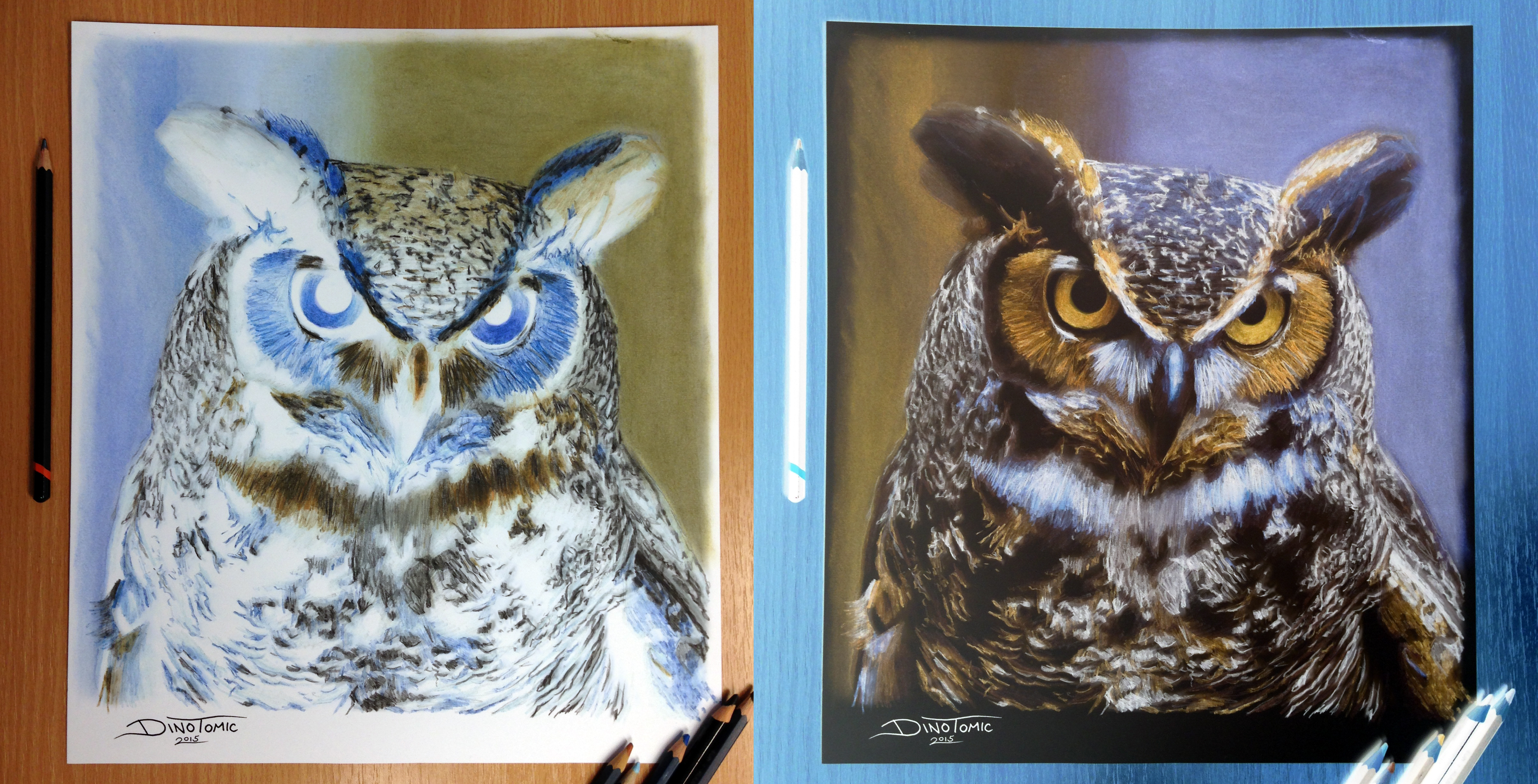 Owl Drawing Color Color Pencil Drawing by