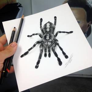 Quick Tarantula sketch