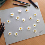Real Flower illusion drawing