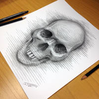Skull Line Drawing by AtomiccircuS