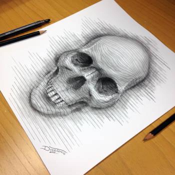 Skull Line Drawing