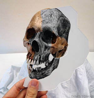 Skull Holding Illusion