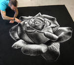 Rose made with Salt