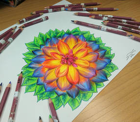 Flower drawing =)