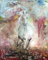Wild Horse by MrZell