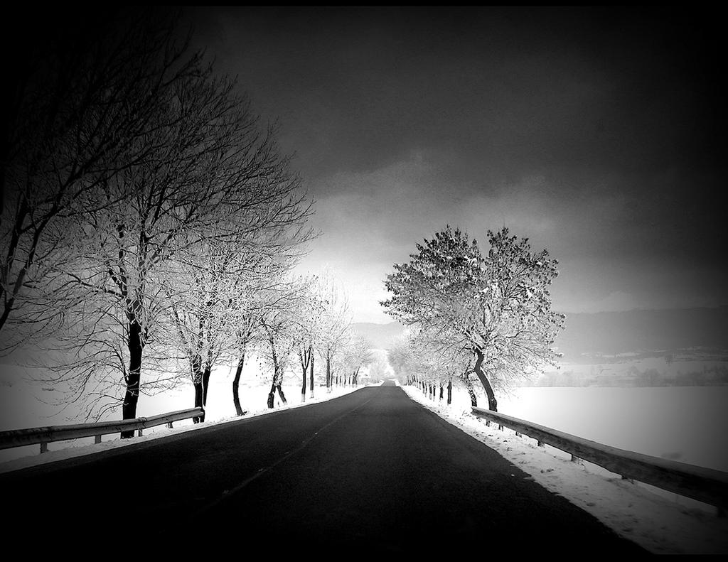 winter roads bw by oblious