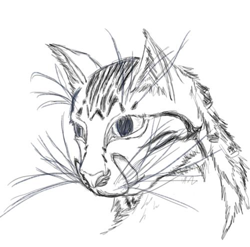 Bored Concept Sketch, Part3 (Second cat)