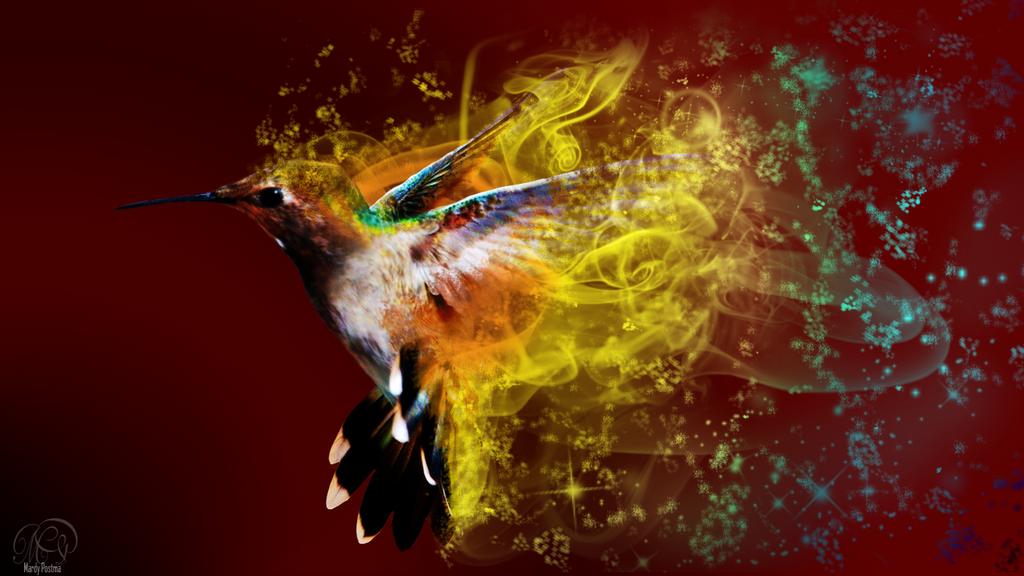 Hummingbird wallpaper by Sothyque-X